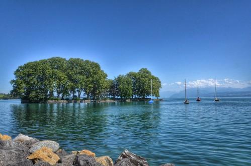 sunshine eau suisse vert bleu damn paysages nwn rolle coth supershot fantasticnature lacléman iledelaharpe alittlebeauty fantasticnaturegroup