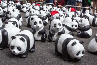 1600_Panda_Jalan_Lintang_Penang_03