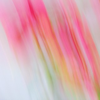 Botanical streak
