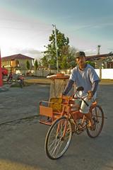 Potpot (pedicab)
