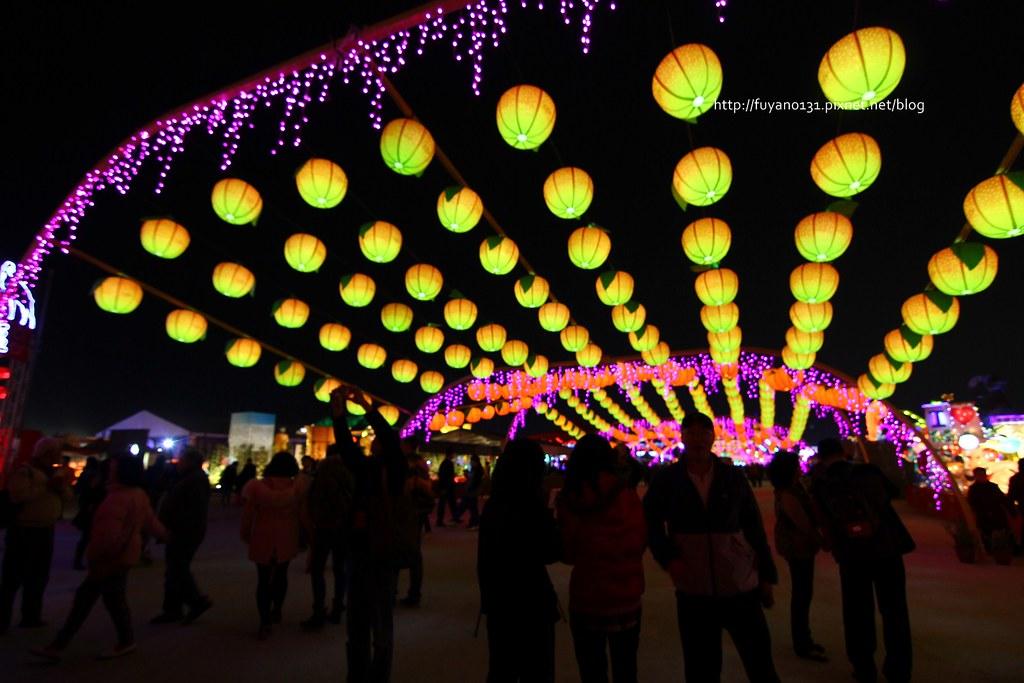 台灣燈會 (55)