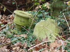 Abney Park cemetery 03