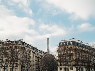 Parisian Skyline