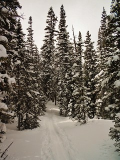 South CMC Trail