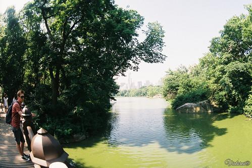 Центральный Парк. Нью-Йорк. Central Park. New York. USA