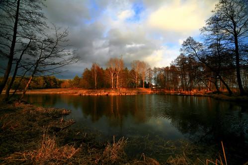 trees winter light sunset lake water canon landscape mirror scenery drohiczyn cesarz marcelxyz