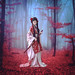The Last Samurai. ㊙️㊗️㊙️. by gusdiaz