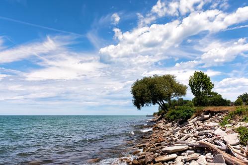 lake lakeerie outdoor shoreline landscape water bue sky clouds seaside coast shore summer cleveland nikon j5 tree