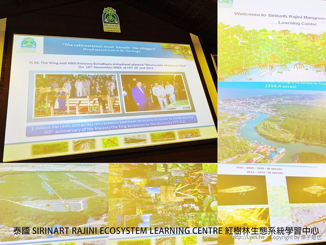 泰國 SIRINART RAJINI ECOSYSTEM LEARNING CENTRE 紅樹林生態系統學習中心 88