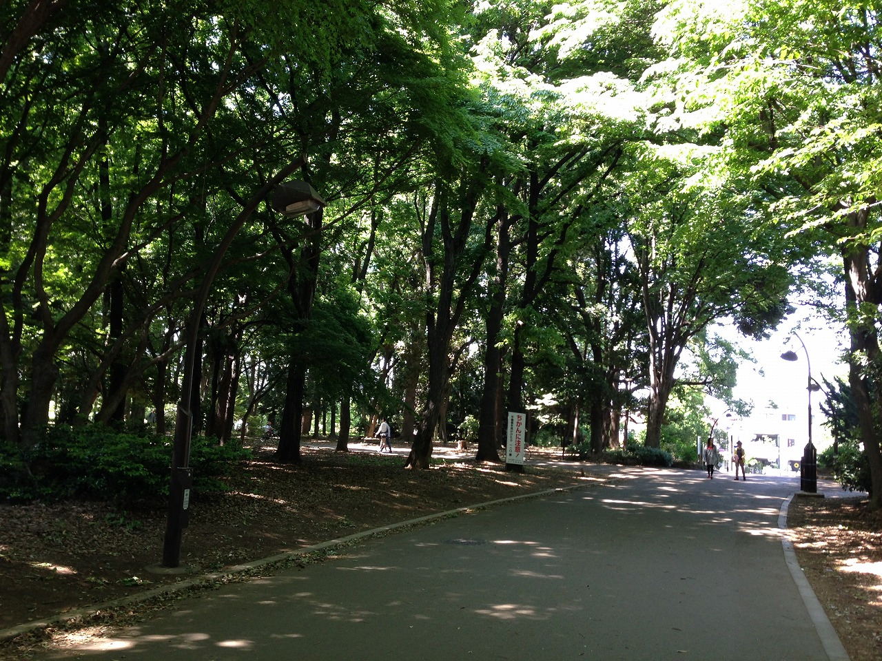 20140511_光が丘 (1)