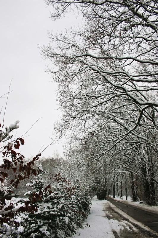 Winter-Wonder-Land Dez 2014_06