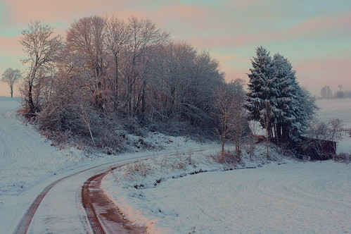 road trees sunrise sony luxembourg manualfocus luxemburg nex manuallens m42mount lieler cosinon50mmf17 emount nex5r sonynex5r lewist584