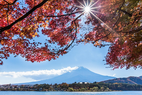 travel autumn lake fall japan canon day sunny clear 日本 sunburst 紅葉 秋 太陽 富士山 mtfuji worldheritage sunflare 楓葉 秋天 河口湖 もみじ 1635mm 世界遺產 redmaples 5dmarkiii 日芒 lakekawaguji