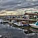 Au port ostréicole d'Andernos... by CBD28