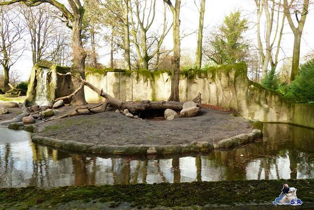 Tierpark Hagenbeck 2.01.2015 7