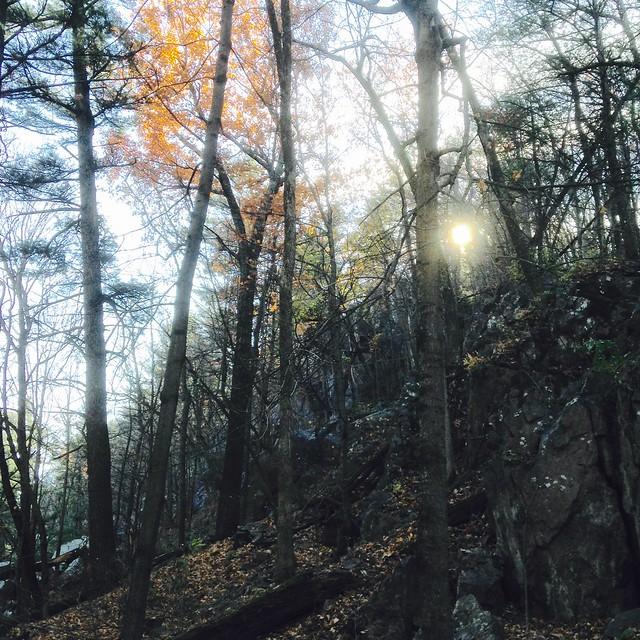 Late Autumn Ridge