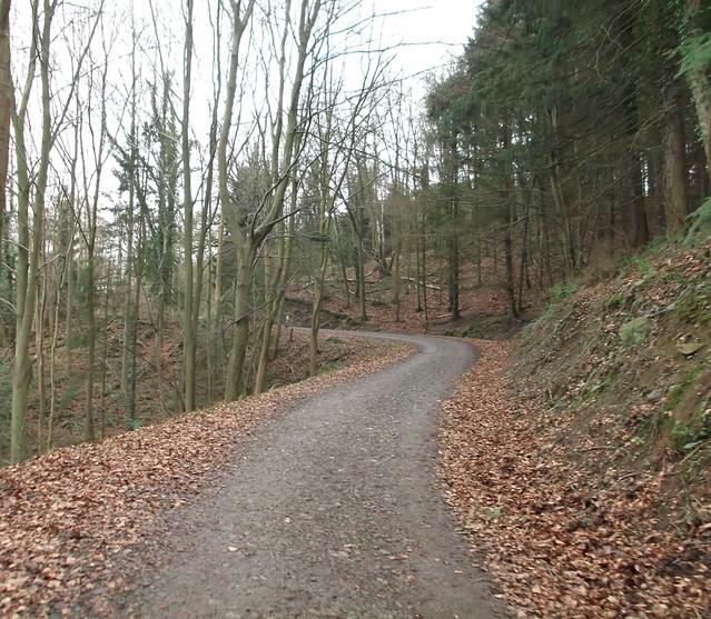 breidden hill 005