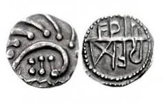 porcupine coin
