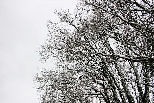 Winter-Wonder-Land Dez 2014_04