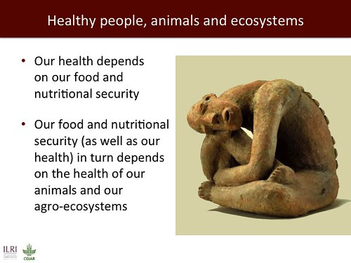 Slide 15: ILRI 2014 one-health presentation