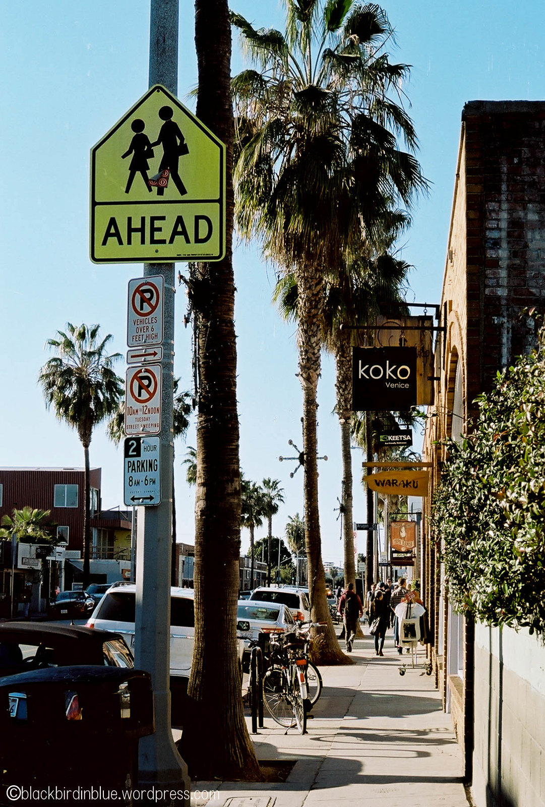 Abbot Kinney - Venice, CA