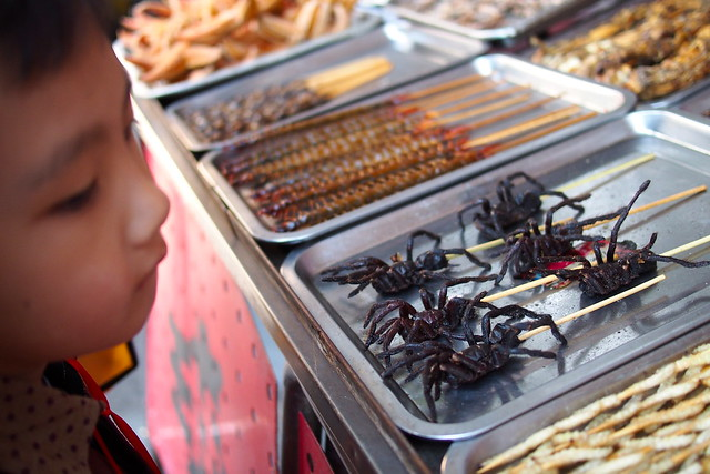 centipedes, beetles, spiders, 东华门夜市 (Dong Hua Men Night Market), Beijing, China