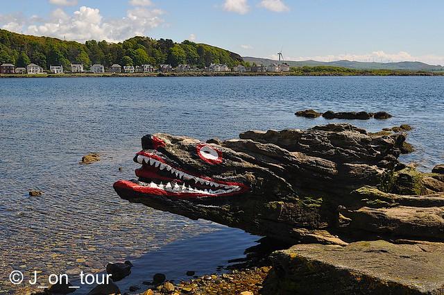 Croc Rock   GJC_016579