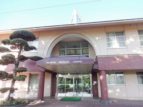 Nihon University Animal Medical Center