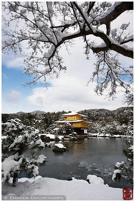 Kinkaku-ji in winter, Kyoto, Japan