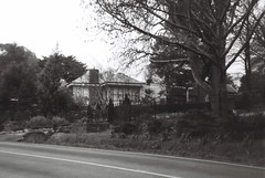 House, trees, and fence