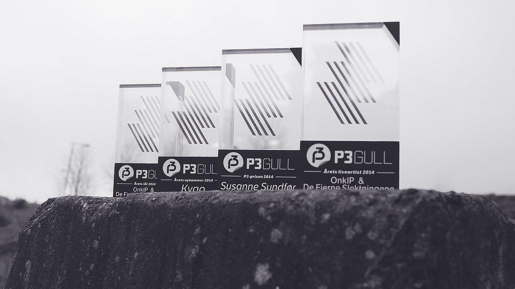 P3 Gull 2014
