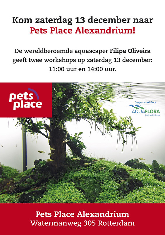 Live Aquascaping Workshop - Rotterdam / Netherlands