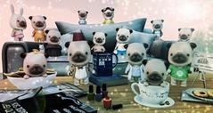 Pugs Love TV