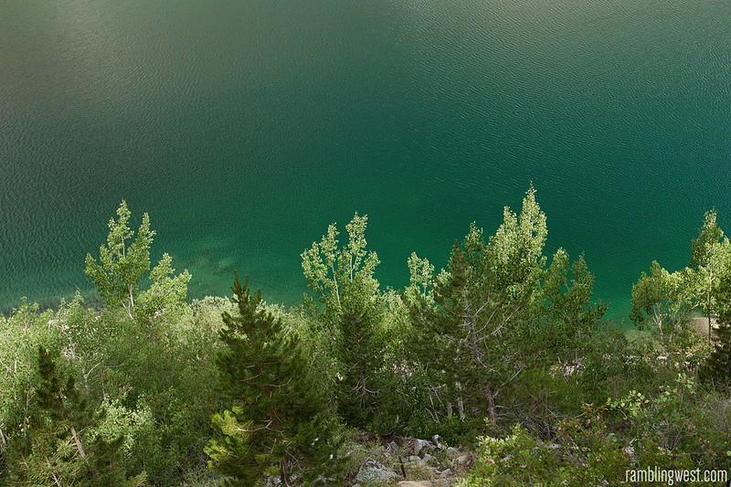 Aspens along Lake Sabrina