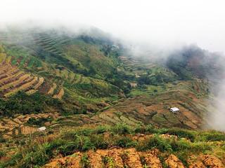 La Presa Farm Baguio