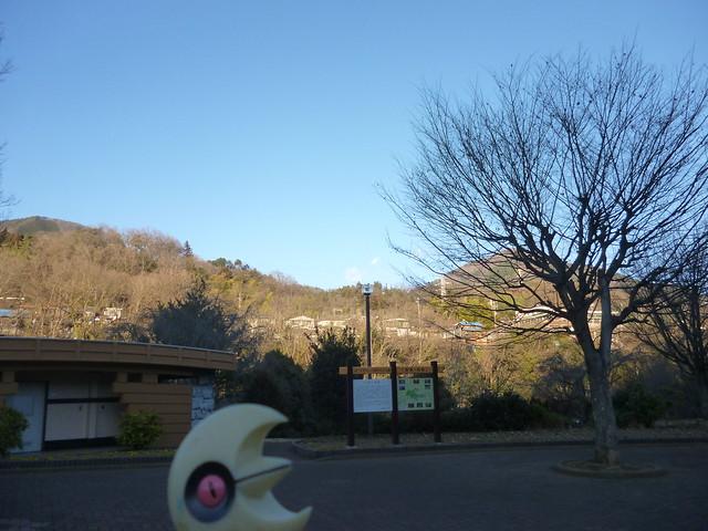 Photo:Lunatone in Otsuki, Yamanashi 5 (Saruhashi bridge) By Kasadera