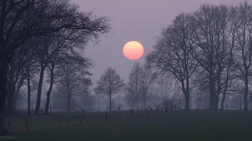 sunset sun nature fog pen germany deutschland sonnenuntergang nebel natur olympus northern sonne nord niedersachsen 150mm ohz 40150mm osterholzscharmbeck mzuiko ohlenstedt epl5