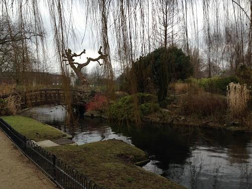 queen marys garden regents park