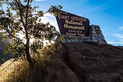 Kings Canyon & Sequoia - 15