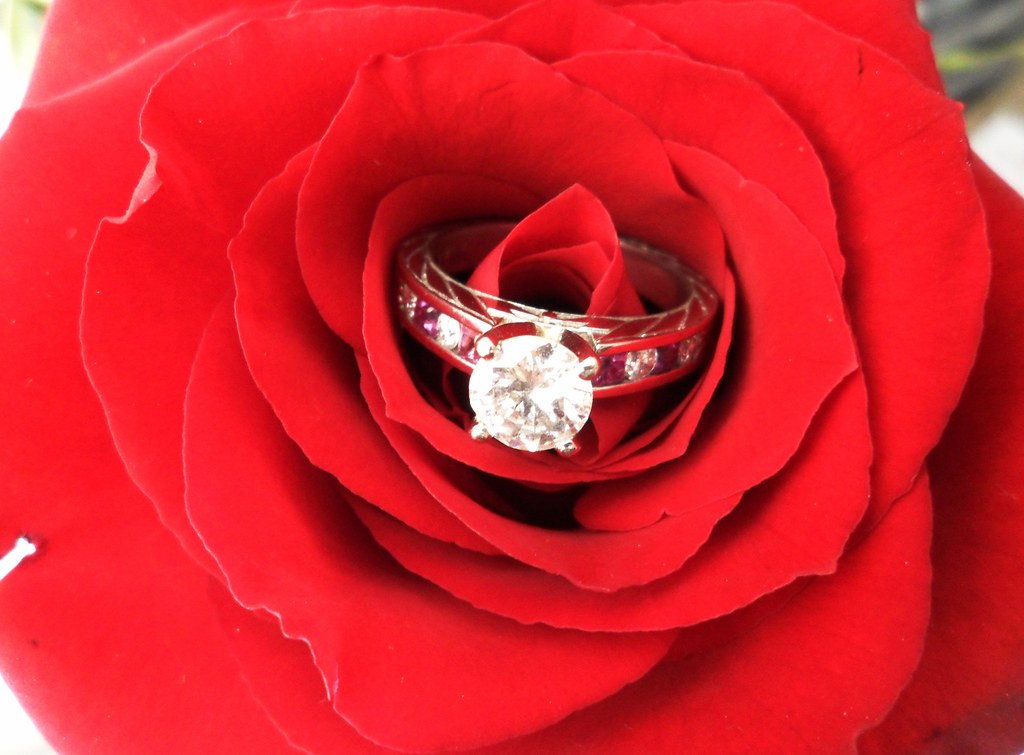 Diamond and pink sapphire engagement ring and a red rose