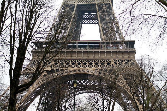 Eiffel Tower (3)