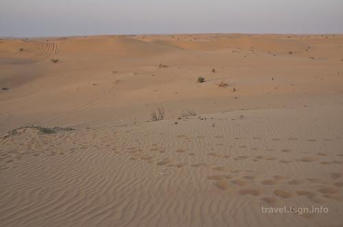 【写真】2014 世界一周 : ドバイ・砂漠(1日目)/2014-12-17/PICT6687
