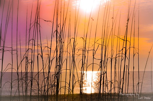 sunset sun gulfofmexico nature water beauty sunshine nikon colorful