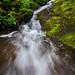 Tremont waterfall... Great Smoky Mountains by jason_frye