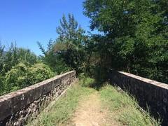 Le Bois, Languedoc