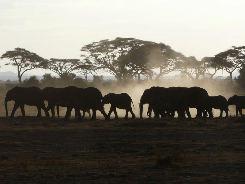 Kenia2007-0750