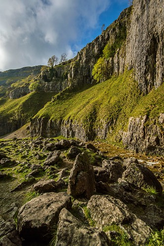 tree grass landscape scenery stream yorkshire hill scar malham goredale dalesrock