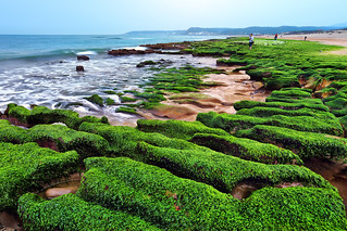 Green Bay 綠色海灣