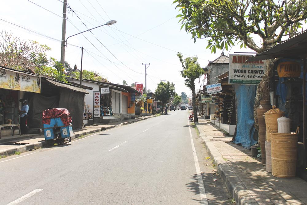 Bali Ubud Jl Raya Tegallalang-20