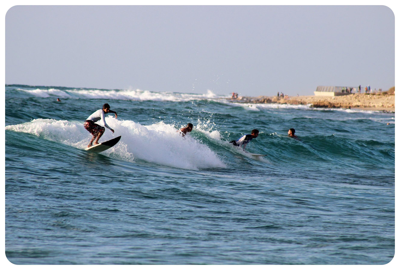 haifa surfers